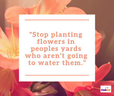 """Stop planting flowers in peoples yards who aren't going to water them."""