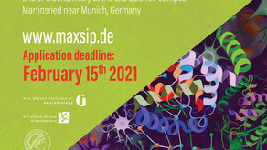 Max Planck Summer Internship Program - MaxSIP (Fully-Funded) in Germany.