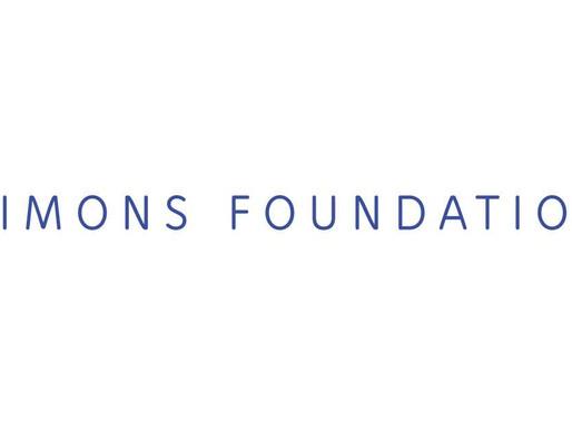 IMU–Simons African Fellowship Program