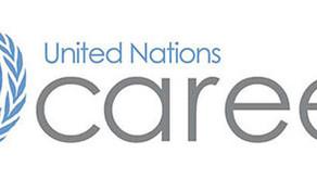 UN Volunteer, Develop Apps for school district & multi programs management system.