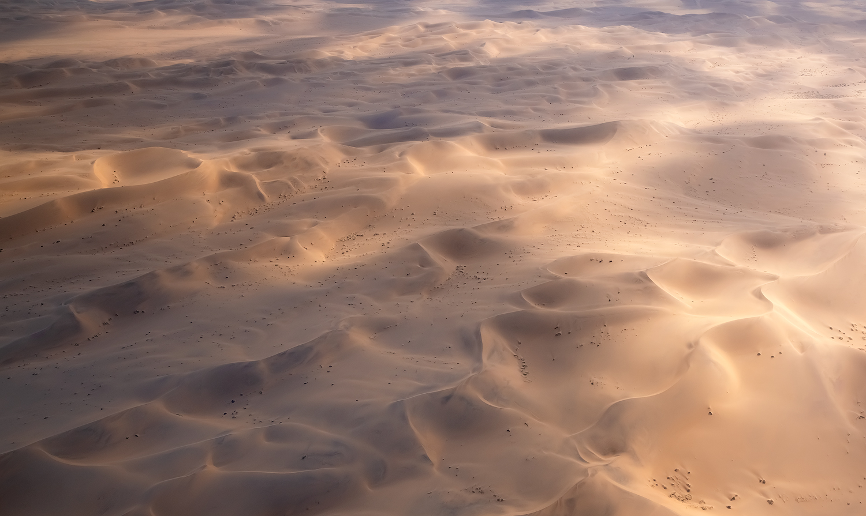 Glistening Desert