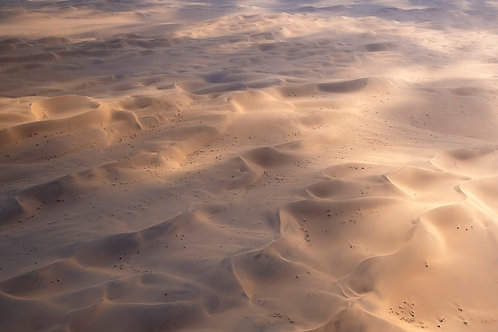 Glistening Desert Fine Art Print