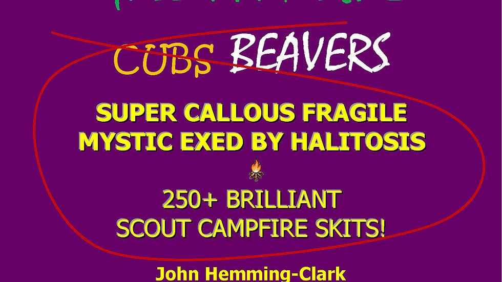 250+ Brilliant Scout Campfire Skits!