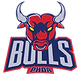 PHDA Bulls Logo.png