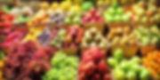 happy-healthy-grocery-store-birmingham-a
