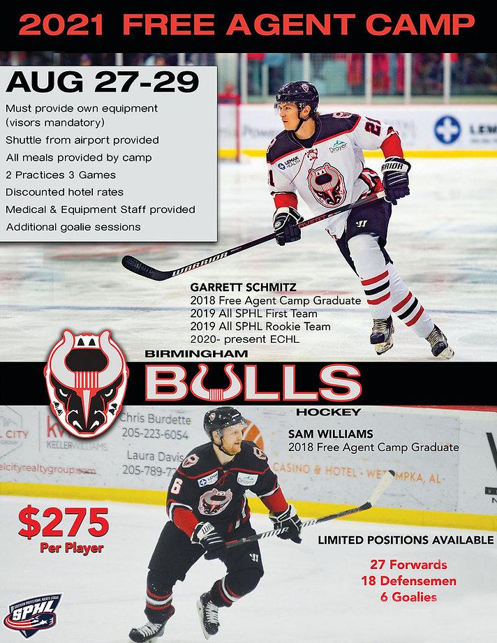 Bulls Free Agent Camp Flyer copy 2.jpg