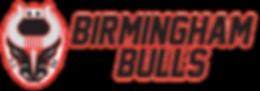 Bulls logo stacked long 2019.png
