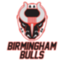 Bulls logo stacked 2019.png