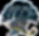 Quad_City_Storm_Logo.png