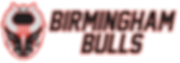 Bulls logo stacked long 2019.png