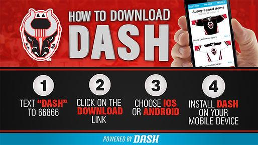 BIRMINGHAM BULLS HOW TO DASH_1280x720.jpg