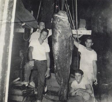 Gulf Fresh seafood company, wholesale seafood, seafood distributor, wholesale shrimp, wholesale seafood birmigham, whosale seafood, bayouo la batre, bayou la batre, lyons seafood, rodney lyons