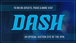 dash_website_2.png