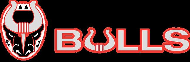 Bulls Type Logo Final 4C.png