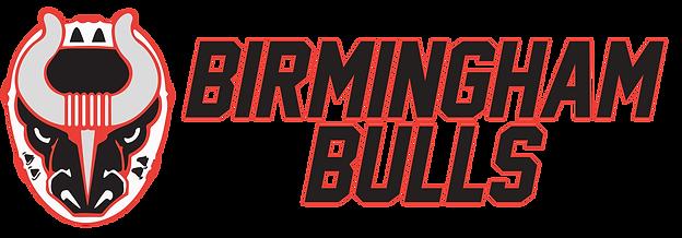 Bulls logo stacked long 2019 copy.png