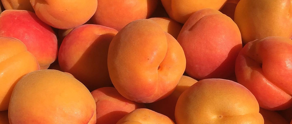 Apricot Flats