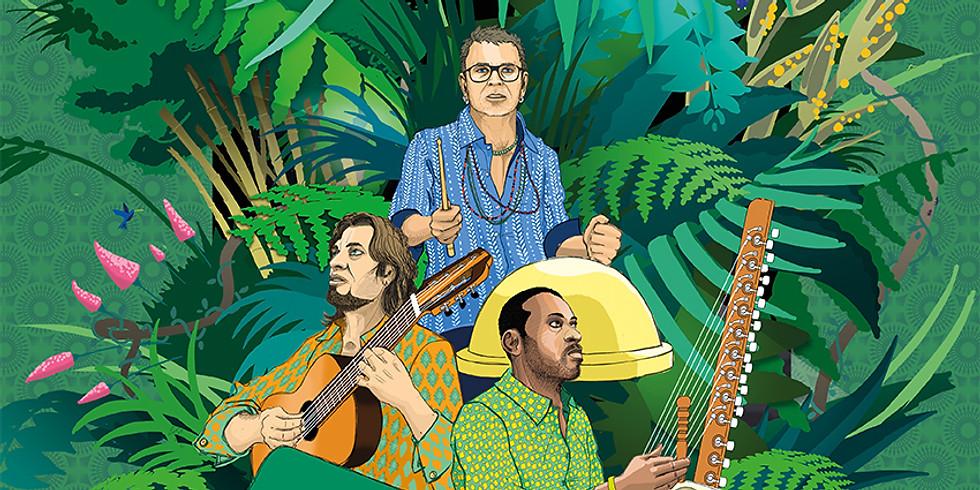 Festival Les suds à Arles - concert trio colibri