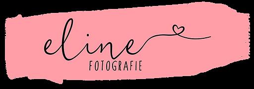 Logo Eline.png