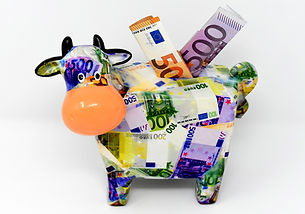 piggy-bank-3297061_1920.jpg