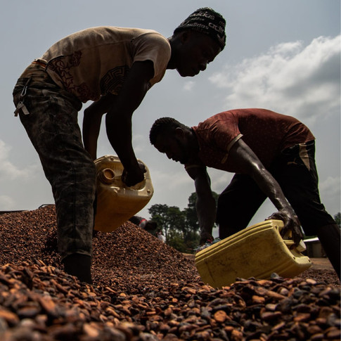 Chocolate and Child Slavery: What You Don't Know