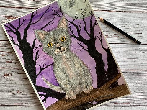 Lykoi a magical cat, pretty in purple