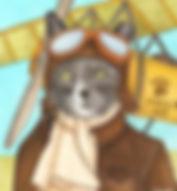 0630a  Pilot Cat_edited.jpg