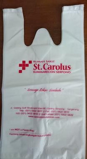 sample bag.jpg