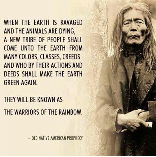 warriors-of-the-rainbow