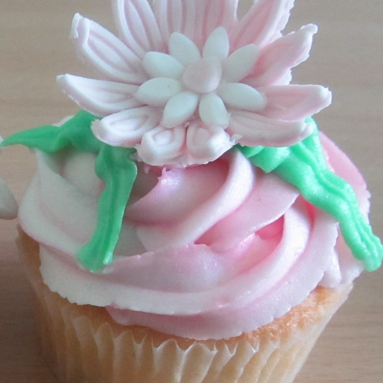 Introduction to Cake Decorating - Webinar