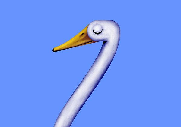 Duck_more_steps.jpg