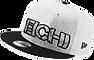 eichi-logo-sw.png
