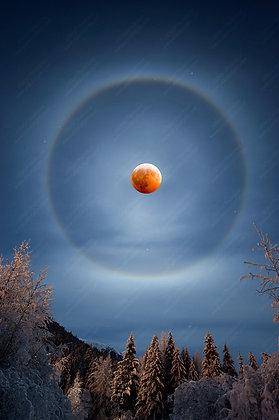 """Eclipse Halo"" Photographic Print"
