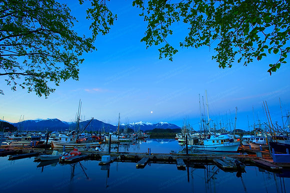 """3A.M. Sitka Harbor"" Photographic Print"