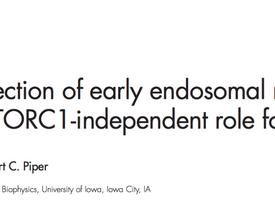 JCB paper published