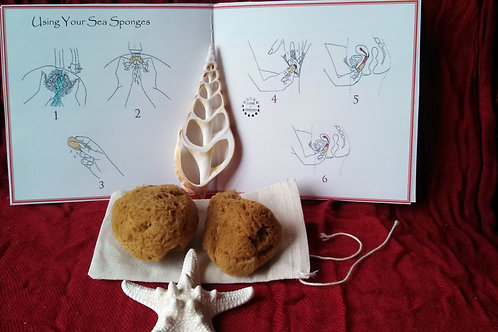 SIMPLE Moontime Yoni Sponge Kit ~ For Bleeding 'Folks