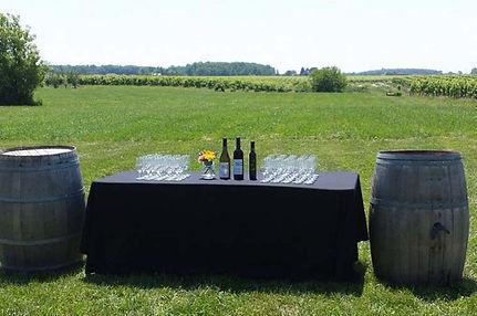 Palatine-Hills-Estate-Winery-niagara-on-