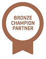 Xero Bronze champion partener dinah james consulting