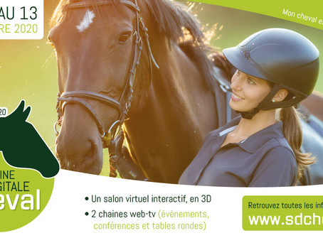 Un Salon du Cheval virtuel