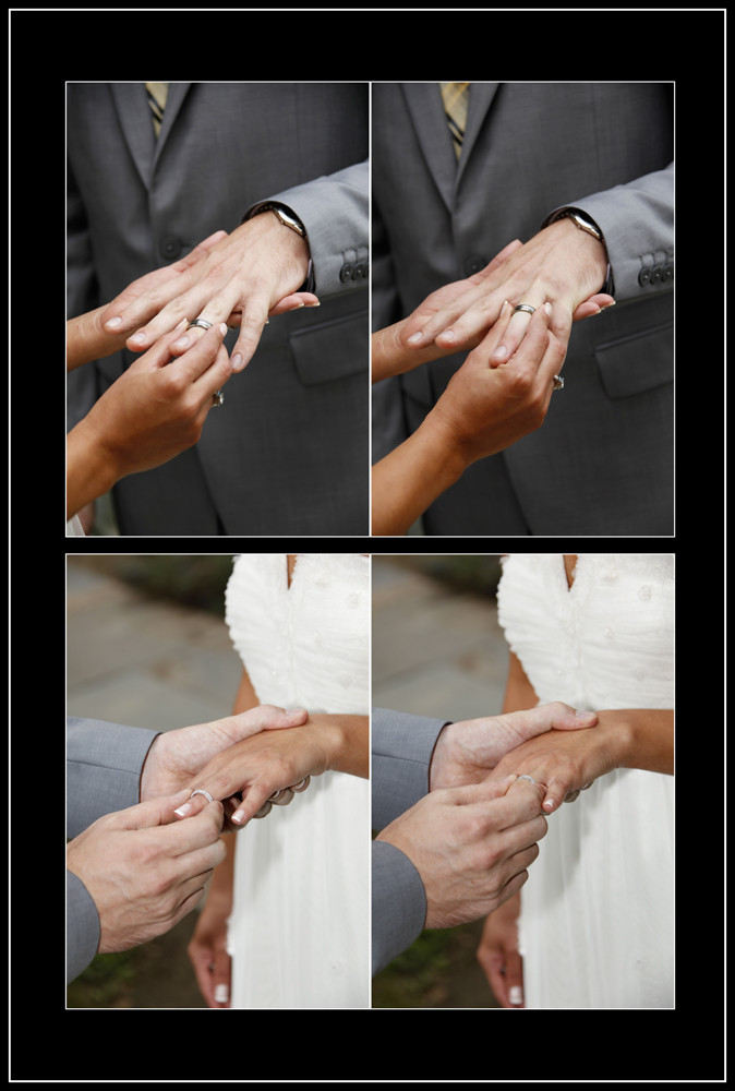 Mark ^ Renee Wedding _ www.GardnerHamilt