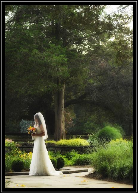 Mark ^ Renee Wedding Gardner Hamilton_ w