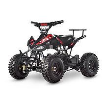 Electric ATV TR240