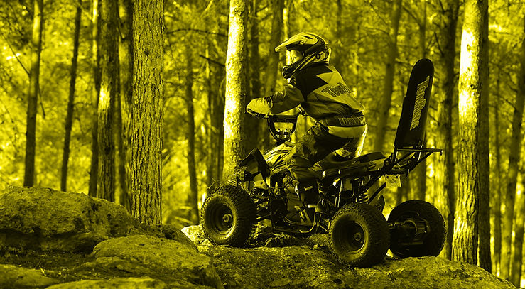 Electric ATV with roll ofver bar TR290 TomRide