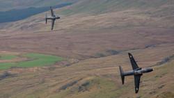 Hawks In The Mach Loop