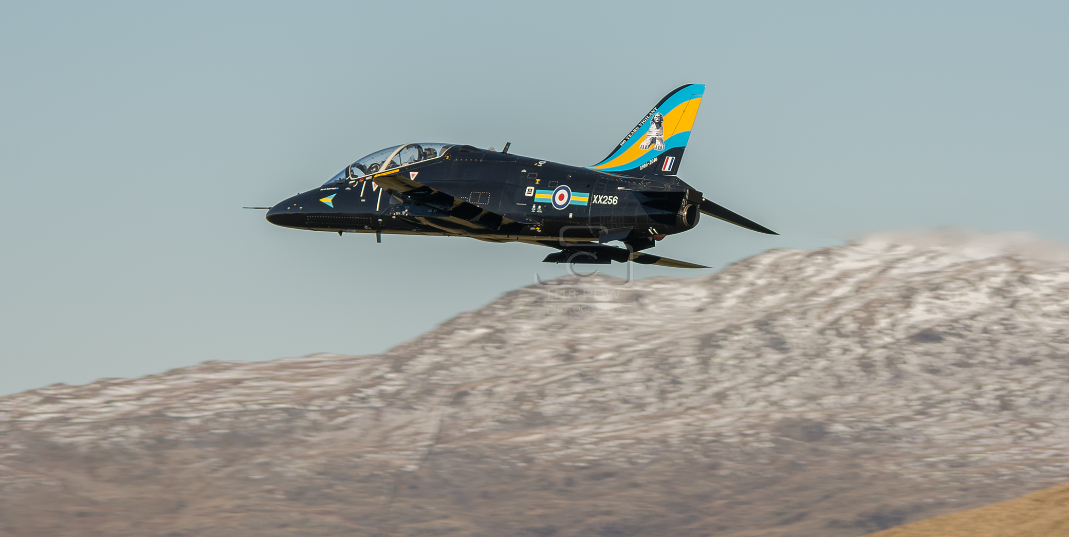 Hawk In The Mach Loop