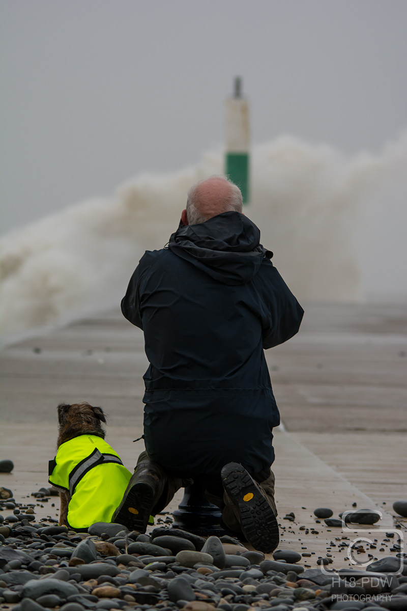 1 Man+His Dog Waves At Aberystwyth