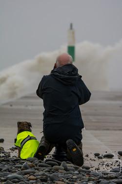 1 Man+His Dog Waves At Aberystwyth