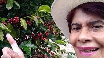 Сальвадор Maria Botto Bourbon Natural