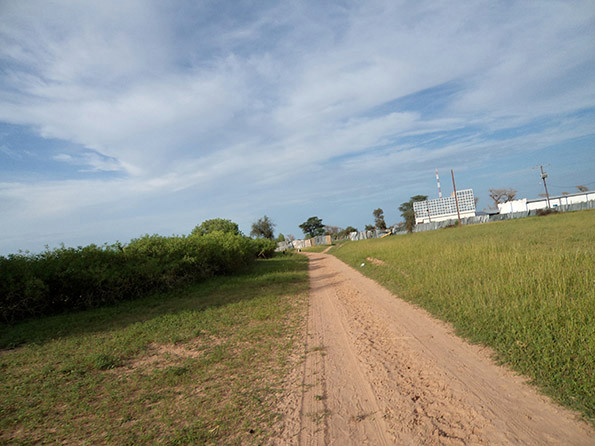 Le_chemin_de_l'usine_de_Mbèye_2.jpg