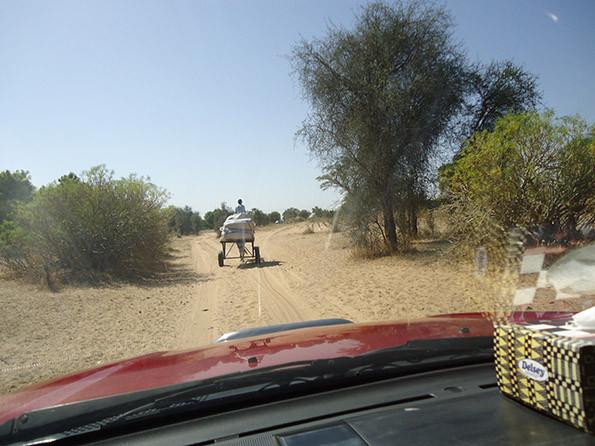 le systeme transport traditionnel villageois 2.jpg