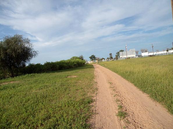 Le_chemin_de_l'usine_de_Mbèye.jpg